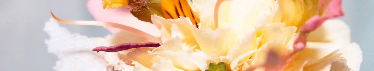 Hybrid Flower_Carnation