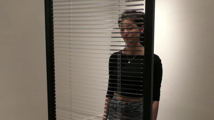 Mirror blind (Conscious consciousness)