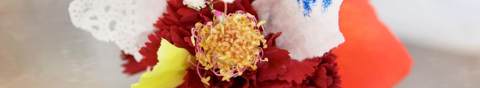 Hybrid Flower_Red Carnation