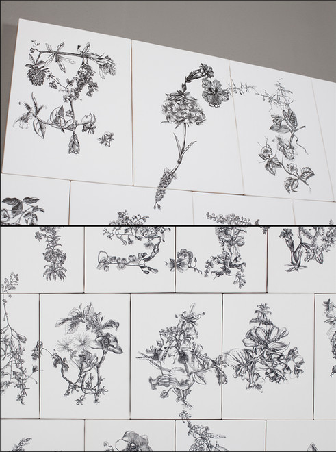 Florilegia Mosaic #1 Detail