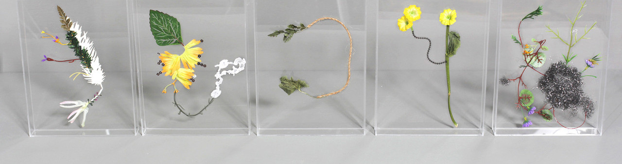 Hybrid Flowers Specimina