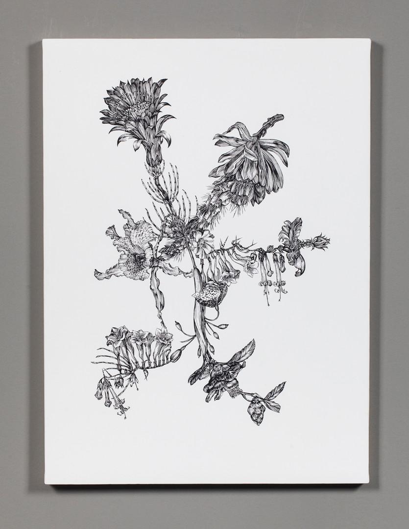 Florilegia #5