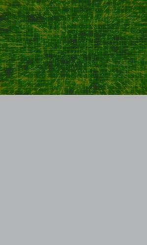 Geospatial Natural Capital Tile.jpg