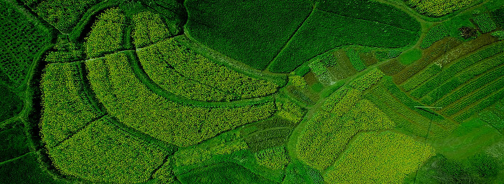 Geospatial Agriculture Background.jpg