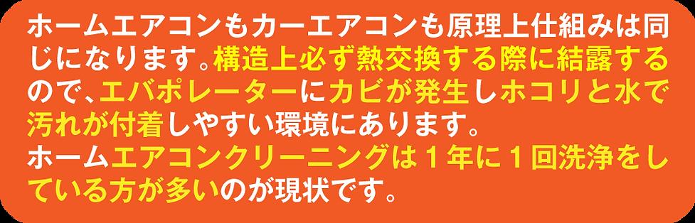 カビ説明文.png