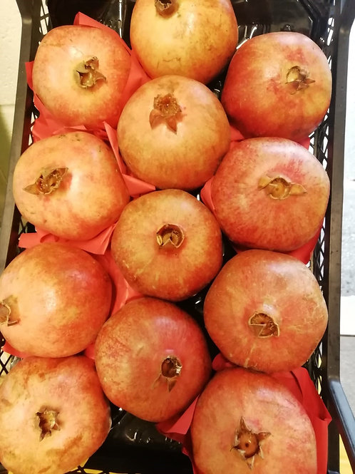 Pomegranate x 1 extra large