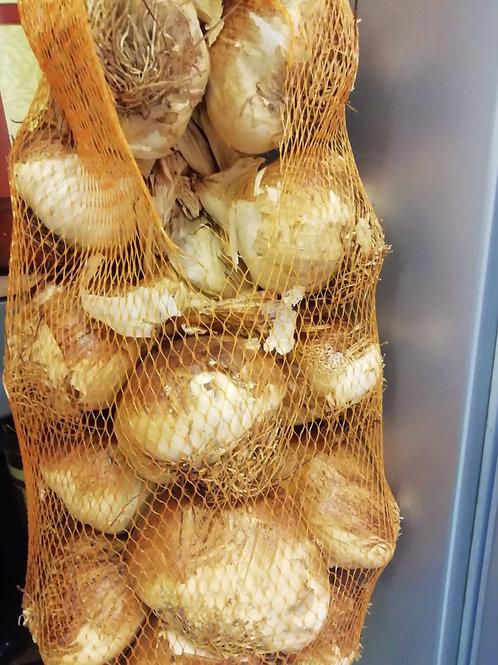 Garlic bulb - smoked