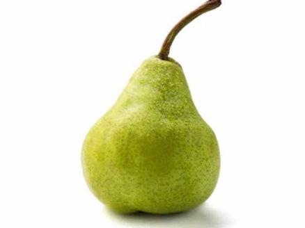 Pear - packhams triumph x 1