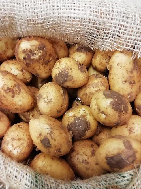 Potatoes - Maris Piper - 1kg