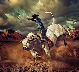 The Secular Bull-Market