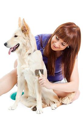 Happy dog owner brushing dog fur