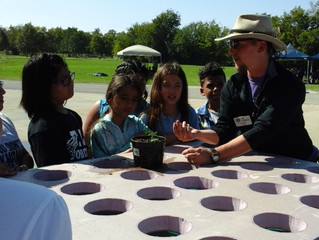 STEM Education & Aquaponics - A Natural Fit