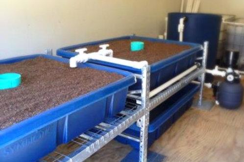 Backyard Aquaponics System - 40 Square Foot