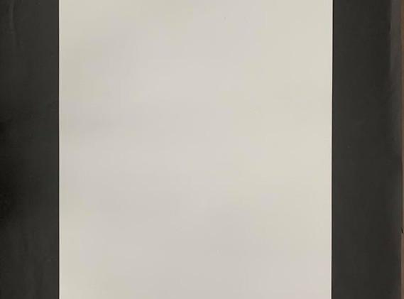 Plaque PVC blanc.jpg
