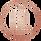 Circle Logo Rose Pillow.png