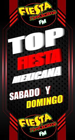 TOP FIESTA.png