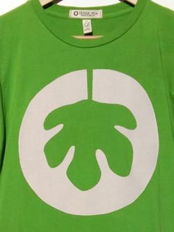 Camiseta verde logo_edited