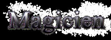 Animation, Robot, Magicien, Clown, spectacles et animations