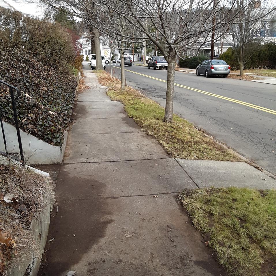 Liz Fisher (Sidewalk-after).jpg