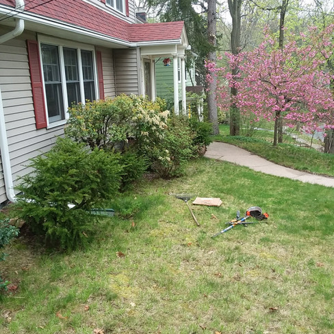Cathy Parsons - Front bed (before).jpg