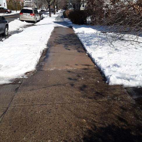 Renate - front walkway (after).jpg