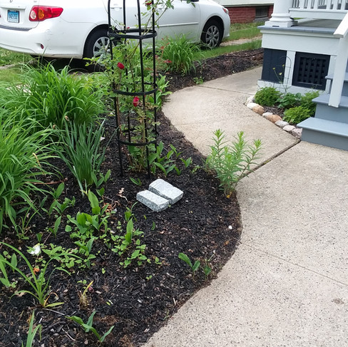 Becky Tupper - Front walkway turn (befor
