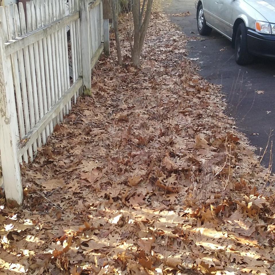 J. Kaufman driveway (before).jpg