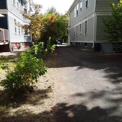 Stephen driveway weeding (after).jpg