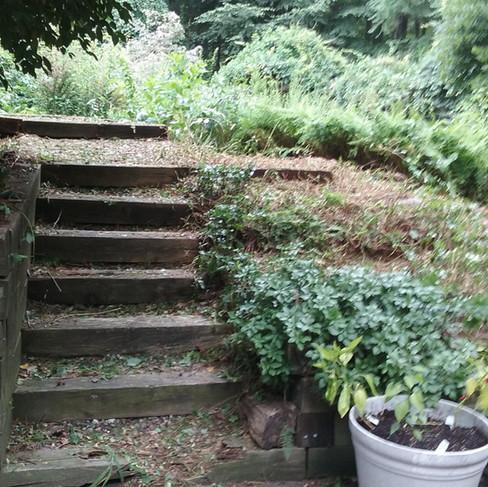 Ransom back steps (before).jpg