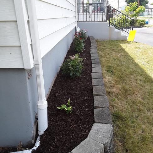 E garden 2 - after.jpg