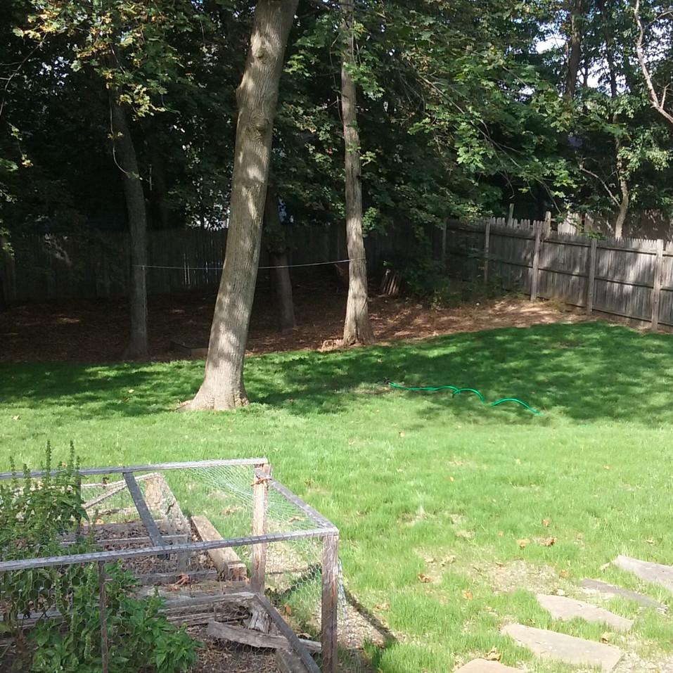 K. Darr backyard (after).jpg