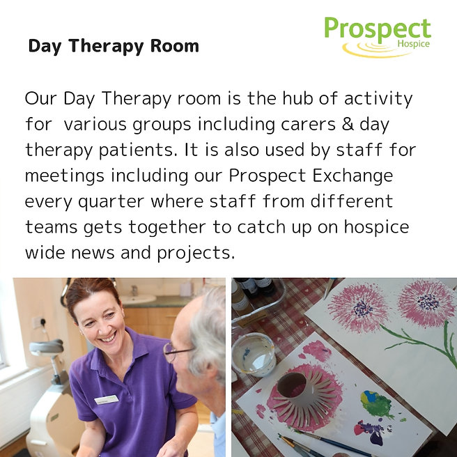 Day Therapy Room graphic for VT touch po