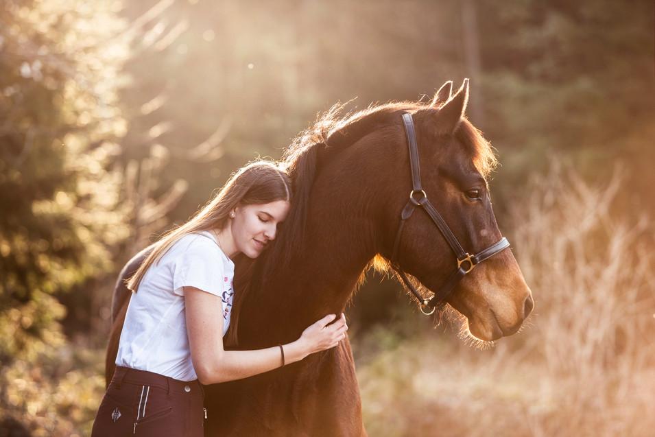 Pferdefotografie_Portrait_Chläus