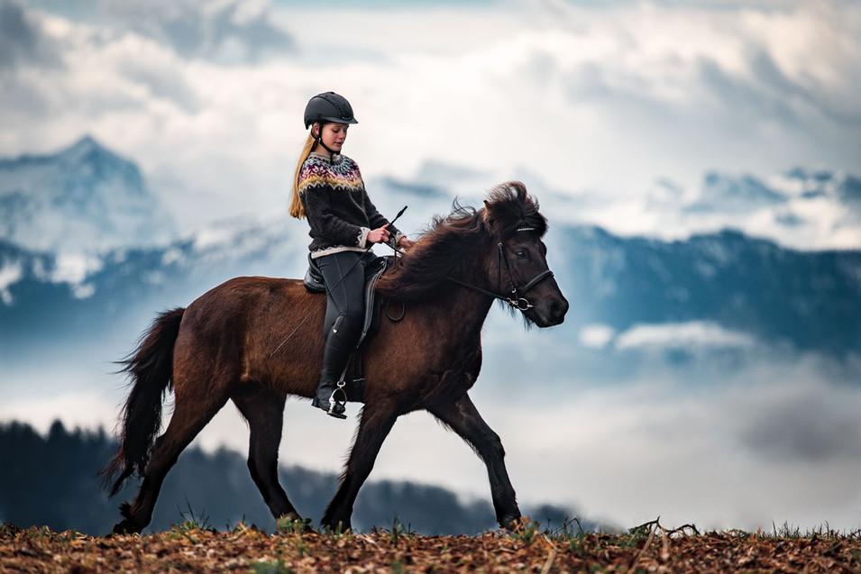 Pferdefotografie_Isländer