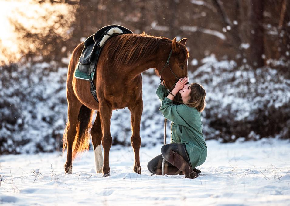 Pferdefotografie_Marquesa