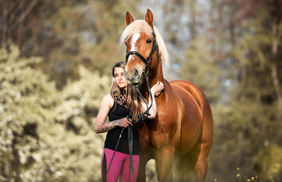 Pferdefotografie_Leo
