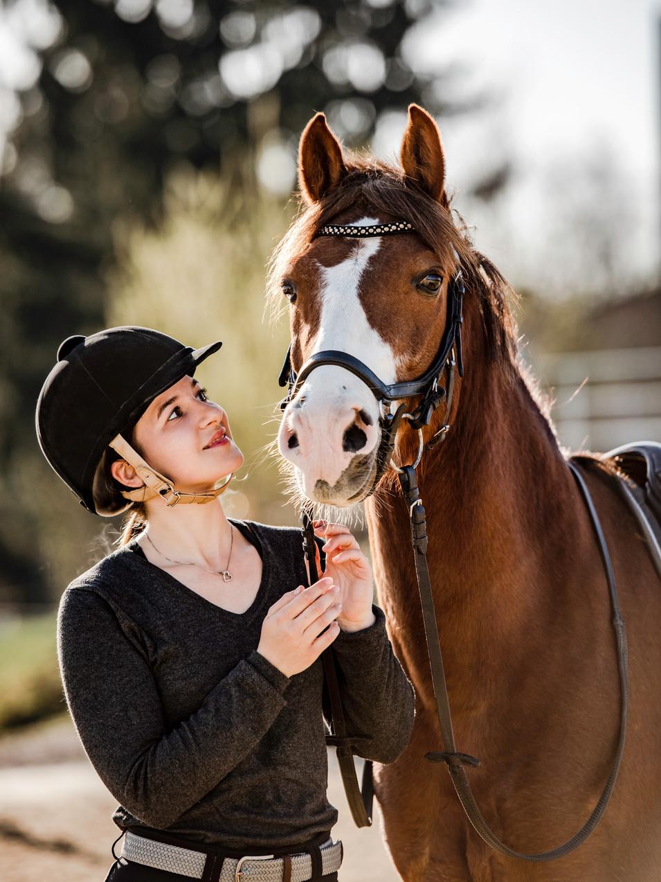 Pferdefotografie-Portrait