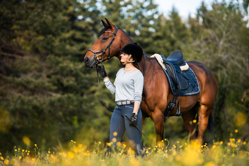 Pferdefotografie_Portrait_Chico Sarah