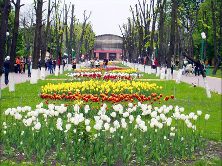 Ukraine is more than just Kyiv, Lviv & Odesa - been to Kropyvnytskyi?