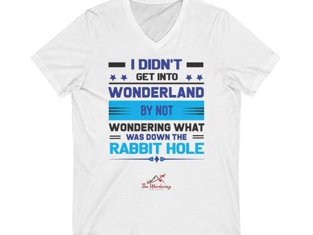 7 Wonderful T-Shirts