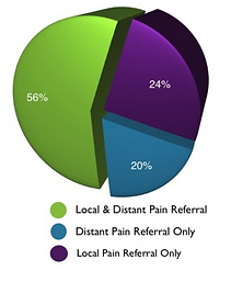 Graph of trigger point referred pain distribution.