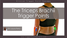 The Triceps Brachii Trigger Points Video