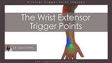 Wrist Extensors Trigger Points Video