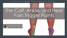calf_ankle_heel_pain_trigger_points.png