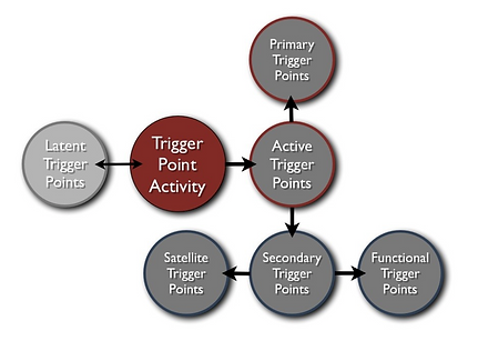 diagram of the progression of trigger point activity between the different types of trigger points