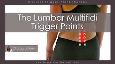 The Lumbar Multifidus trigger points video.