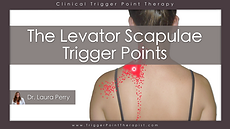 Th Levator Scapula trigger points video.