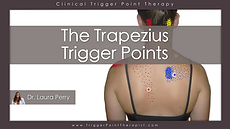The trapezius trigger points video.