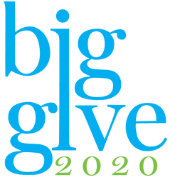 Big Give 2020 color.png