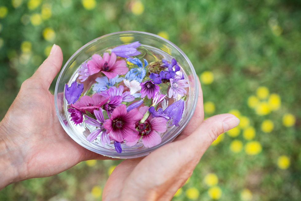 plant tinctures with flower for alternat